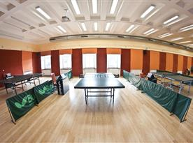 Profesionální herna stolního tenisu