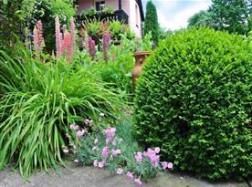 Zahrada ve dvoře penzionu