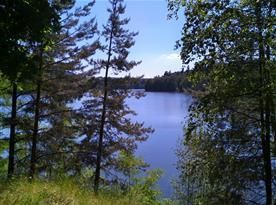 Trnávka (4 km) - koupání a rybaření