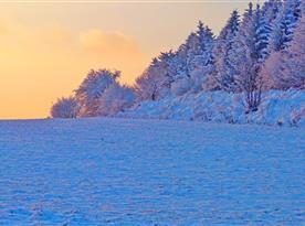 Úchvatné barvy podvečerního slunce v okolí Šibené ve Studené