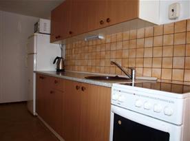 Plně vybavená kuchyně propojená se společenskou místností