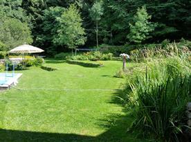 Pohled na zahradu v zadní části ohraničenou lesem