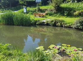 Rybníček na návsi osady s posezením