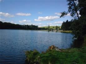 Rybník Medlov (1 km)
