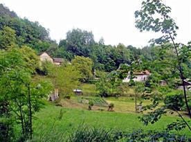 Chalupa je obklopena zelení a lesy