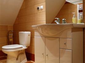 Horní koupelna se sprchovým koutem a wc