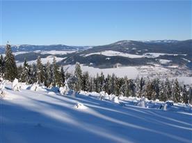 Pohled z východního svahu Bukové hory na masiv Králic. Sněžníku, Jeřáb a Jesenickou hřebenovku