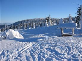 Jasné zimní dny na Bukové hoře
