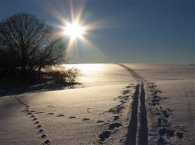 Odpolední slunko na bílých pláních nad Horským domečkem