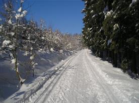 Jestřebí hory, místo pro zimní rekreaci