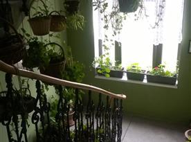 Schodiště v apartmánovém domě