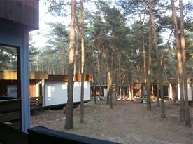 výhled z chaty na východní část lesní osady,klidné místo k odpočinku