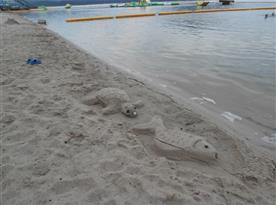 soutěž o nejlepší výtvor z písku na Hlavní pláži Staré Splavy