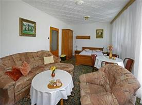 Apartmán s  2+2 lůžky, terasou, gaučem, WiFi, TV/SAT,WC, lednička, varná konvice a základní nádobí