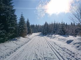 Zima - Výlet z Bukové hory na Suchý vrch - pěšmo i běžmo :-))