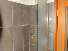 vana a sprcha v koupelně