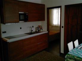 Kuchyně s linkou, lednicí, dvouplotýnkovým indukčním vařičem, mikrovlnou troubou a varnou konvicí