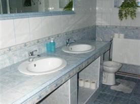 Pohled na sociální zařízení se sprchou, toaletou a dvěma umyvadli