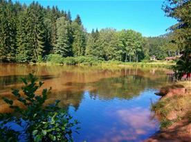 Soukromý rybník k rybaření (2 km od objektu)