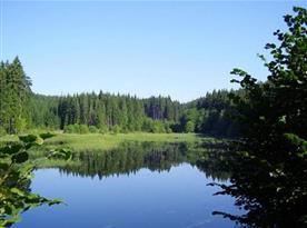 Krásná okolní příroda České Kanady