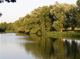Řeka Sázava (400 m)