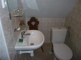 Toaleta s umyvadlem v koupelně