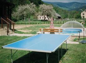 Ping-pong stůl, bazén a výhled na Dl. Stráně