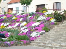 Květinová ozdoba obce