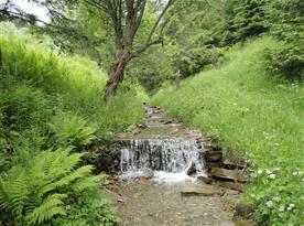 Lesná oddychová zóna
