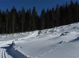 Bežecká trať na Donovaloch...