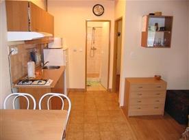 Kuchyně s linkou, lednicí, mikrovlnou troubou a rychlovarnou konvicí