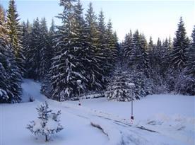 Pohled na příjezdovou cestu v zimě