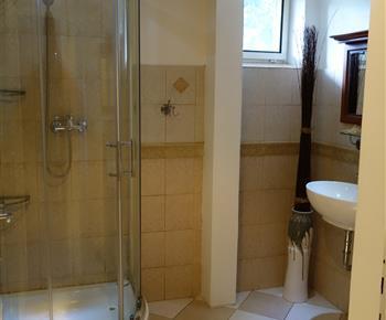 Koupelna se sprchou a umyvadlem