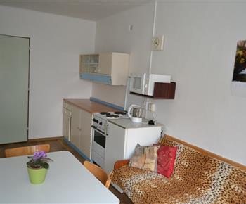 El.sporák, lednice, mikrovlná trouba v obývací kuchyni