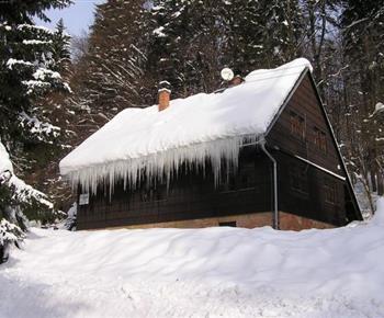 Chata v zimě v lesním prostředí