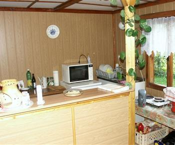 Kuchyně se sporákem, mikrovlnnou troubou, lednicí a rychlovarnou konvicí