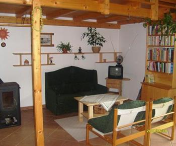Společenská místnost s posezením, krbem a televizí
