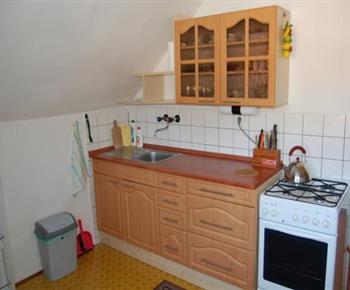 Kuchyně se sporákem, lednicí a mikrovlnou troubou
