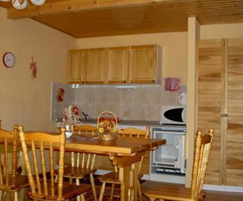 Kuchyně s linkou, elektrickým vařičem, lednicí, mikrovlnou troubou a jídelním koutem
