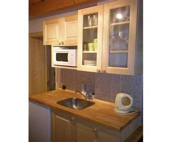 Kuchyně s linkou, lednicí, dvouplotýnkovým vařičem, mikrovlnou troubou a varnou konvicí