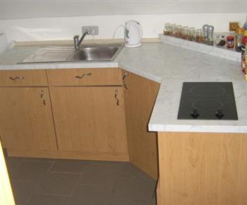 Kuchyně s linkou, dvouplotýnkovým vařičem, mikrovlnou troubou a rychlovarnou konvicí