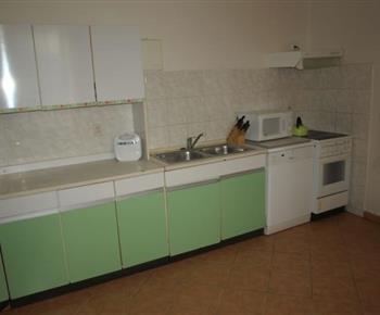 Kuchyně s linkou. lednicí, sporákem a mikrovlnou troubou