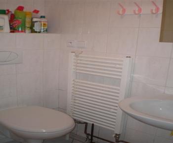 Koupelna v suterénu chaty s toaletou