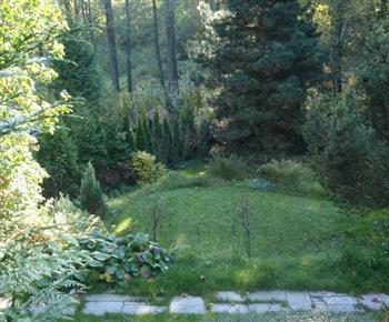 Upravená zahrada za chalupou