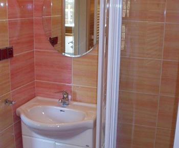 Pohled na sociální zařízení se sprchovacím koutem, umyvadlem a zrcadlem