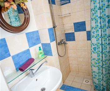 Pohled na sociální zařízení se sprchou a toaletou