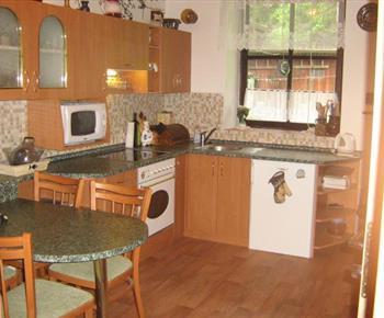 Kuchyně s varnou konvicí, mikrovlnnou troubou a lednicí v apartmánu B