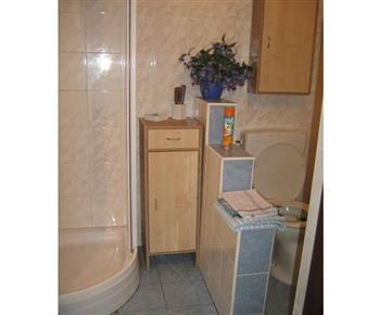 Koupelna s toaletou, sprchou a umyvadlem v apartmánu B