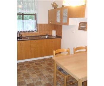Kuchyně s varnou konvicí, mikrovlnnou troubou a lednicí v apartmánu A