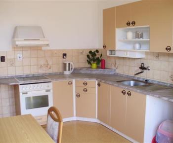 Apartmán A - kuchyně s mikrovlnnou troubou, rychlovarnou konvicí a lednicí